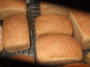 100% Stoneground Whole Wheat Loaf from Allendale Bakery