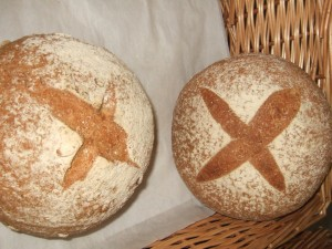 50% Whole Wheat Cob from Allendale Bakery